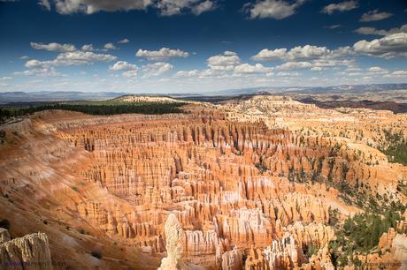 Estados Unidos. Donde la Naturaleza es Grande. Parte I