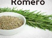 Romero, planta medicinal olor excepcional