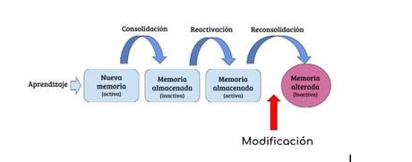 La maleabilidad de los recuerdos