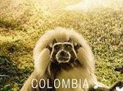 Ensayo colombia magia salvaje