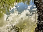 lago imaginación