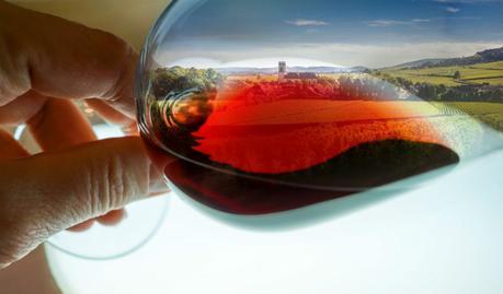 Reflejo en copa de las rutas del vino de España