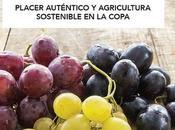 Vinos naturales España, nuevo