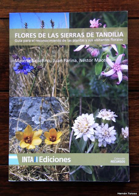 Flores de las Sierras de Tandilia