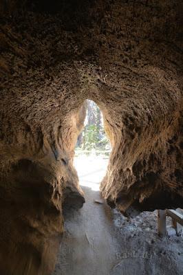 Sequoia National Park-Caminando por el Bosque Gigante