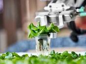 Primera Granja autónoma mundo produce alimentos!