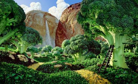 Para hacer con brócoli y col ( y no son recetas).
