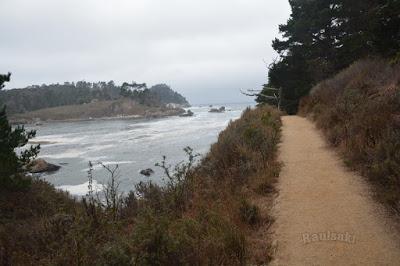 Big Sur Coast Highway, conduciendo por la Nacional 1 de San Francisco hasta Los Angeles