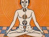 """columna vertebral Cuatro serpientes"""" Artículo Joaquín Weil publicado yogaenred.com"""