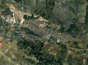 "Monumento Natural: acebuche Espinillo"""
