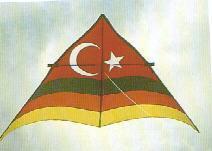 Turkey Flag Kite