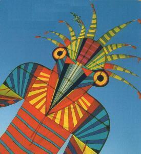 Bug Man Kite