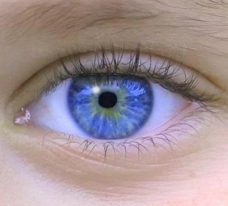¿Que pasa cuando un niño que nace ciego obtiene la vista?