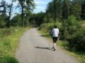 Nordic walking Aracena