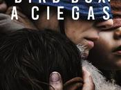Bird Box, nueva película ganadora Oscar Susanne Bier Sandra Bullock