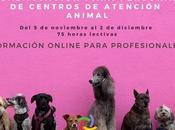 Formación para personal centros atención animal.