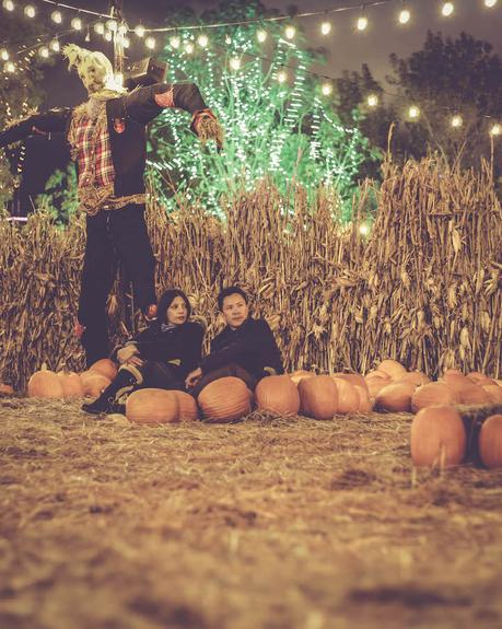 Jacks Pumpkin Nights
