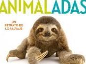 """Animaladas"" Kwame Alexander Joel Sartore"