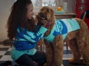 Esta marca comida para mascotas creado jerséis navideños juego perros dueños