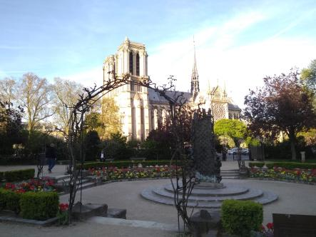El árbol más viejo de París