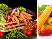 Incorporar verduras vegetales dieta puede...