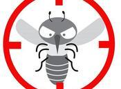Guía definitiva para acabar mosquitos este verano