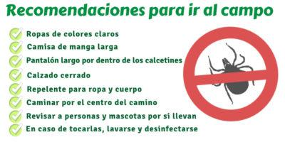recomendacion_campo_garrapata_american_pest_control_madrid