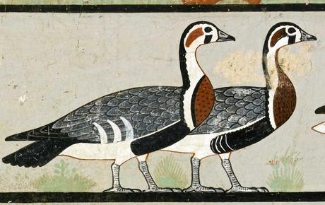 simbologia-ganso-oca