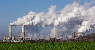 Las malas críticas de la economía ecológica