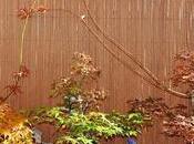 poco otoño