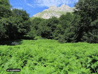 Bezanes-Cotu Muries-Cerréu-Faucáu-Cantu l´Osu-La Vega Brañagallones