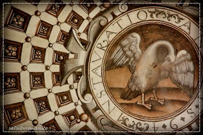 El pelícano en la simbología zoomórfica