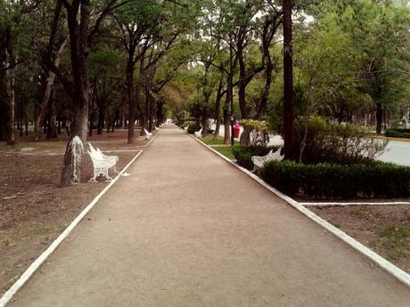 Podrían construir un estacionamiento privado en Parque Morales