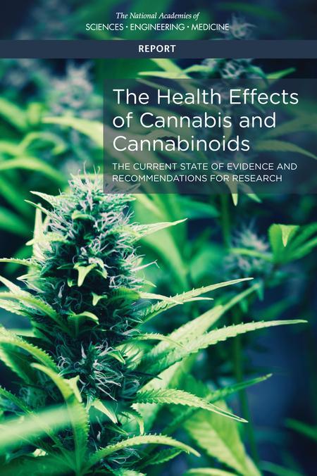 Los verdaderos riesgos y beneficios del consumo de marihuana