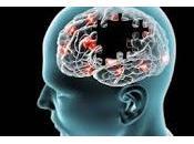Desarrollan Prueba para Detectar Tratar Demencias