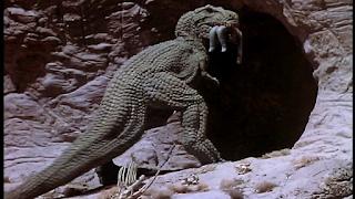 PLANETA DE LOS DINOSARURIOS, EL (Planet of Dinosaurs) (USA, 1978) Ciencia Ficción