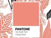 Pantone 2019: living coral 16-1546