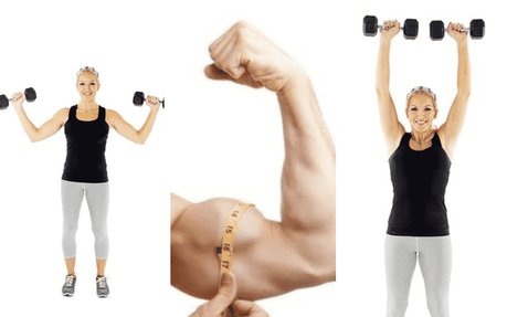 aumentar los bíceps