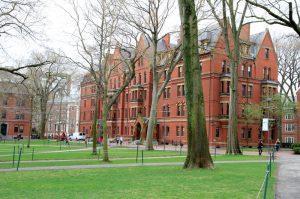 La Universidad Más Populare Del Mundo
