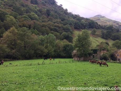 Ruta por el valle del Asón