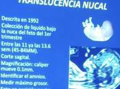 Medición translucencia nucal
