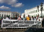 Namigran, agricultores Llerena protestan impagos