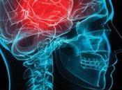 sedentarismo perjudicial para cerebro corazón