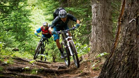 Las mejores bicicletas de montaña para el 2019 (I PARTE)