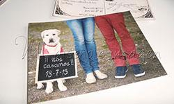 https://nlldiseno.blogspot.com/2015/07/invitaciones-boda-postal.html