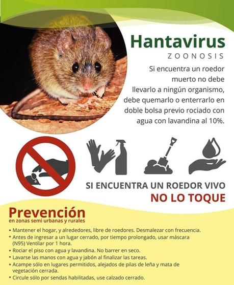 Nuevas emergencias con los malditos virus