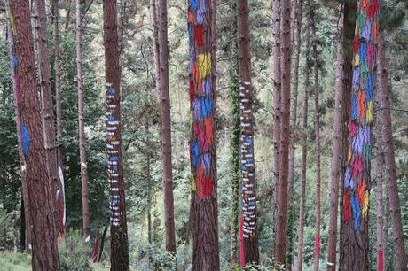 El Bosque de Oma de Ibarrola