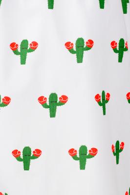 The Cool Cactus, la importancia de los calzoncillos