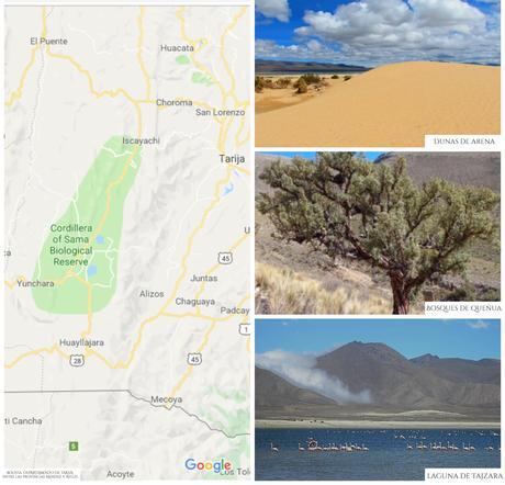 Reserva Biologica Cordillera de Sama