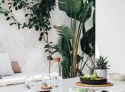 Cómo decorar plantas añadir frescor decoración